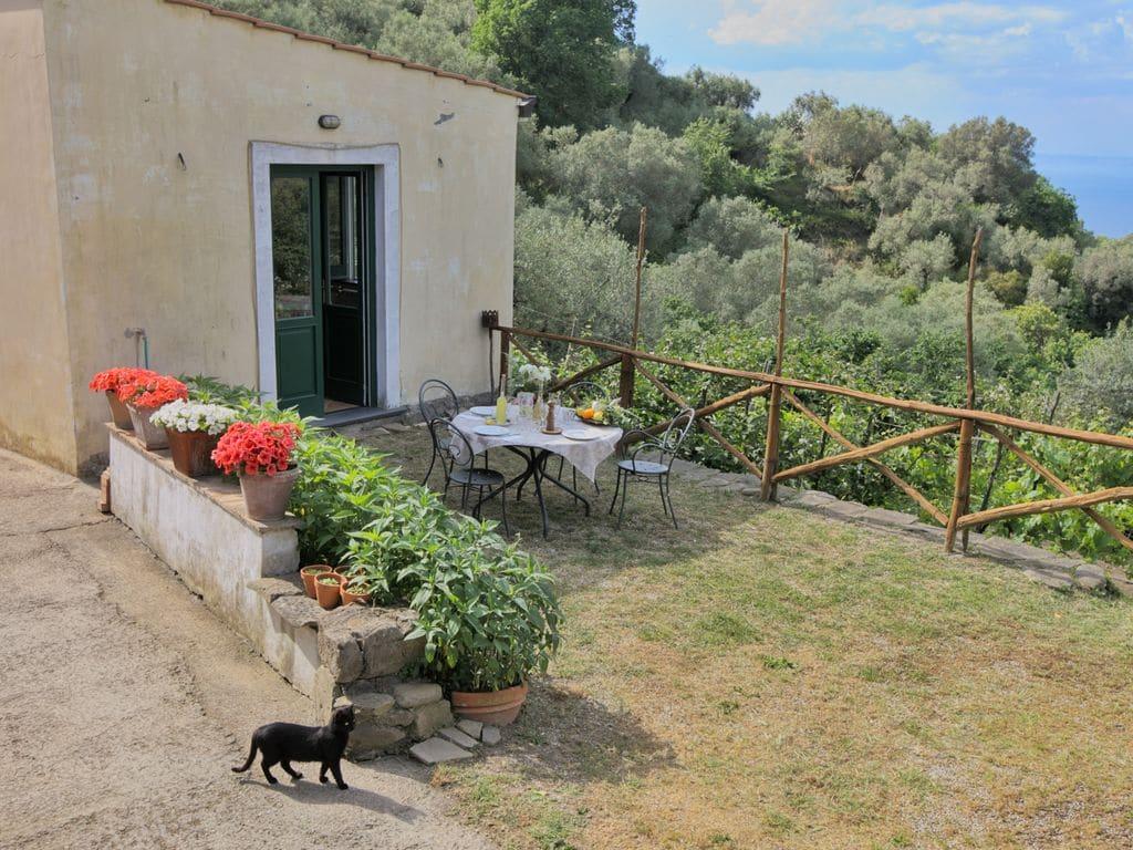Ferienhaus Malerischer Bauernhof mit Meerblick in Sant'Agnello (307472), Sant'Agnello, Amalfiküste, Kampanien, Italien, Bild 23