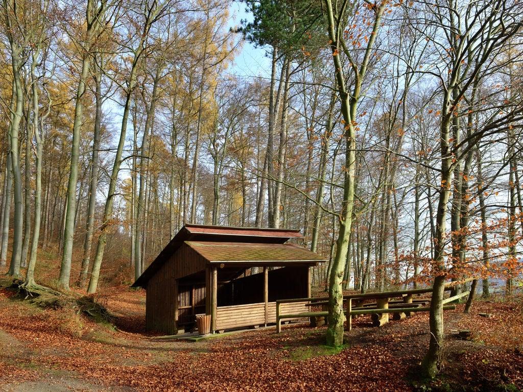 Ferienwohnung Ruhige Ferienwohnung in Löwensen Niedersachsen mit Terrasse (310972), Bad Pyrmont, Weserbergland (Niedersachsen), Niedersachsen, Deutschland, Bild 27