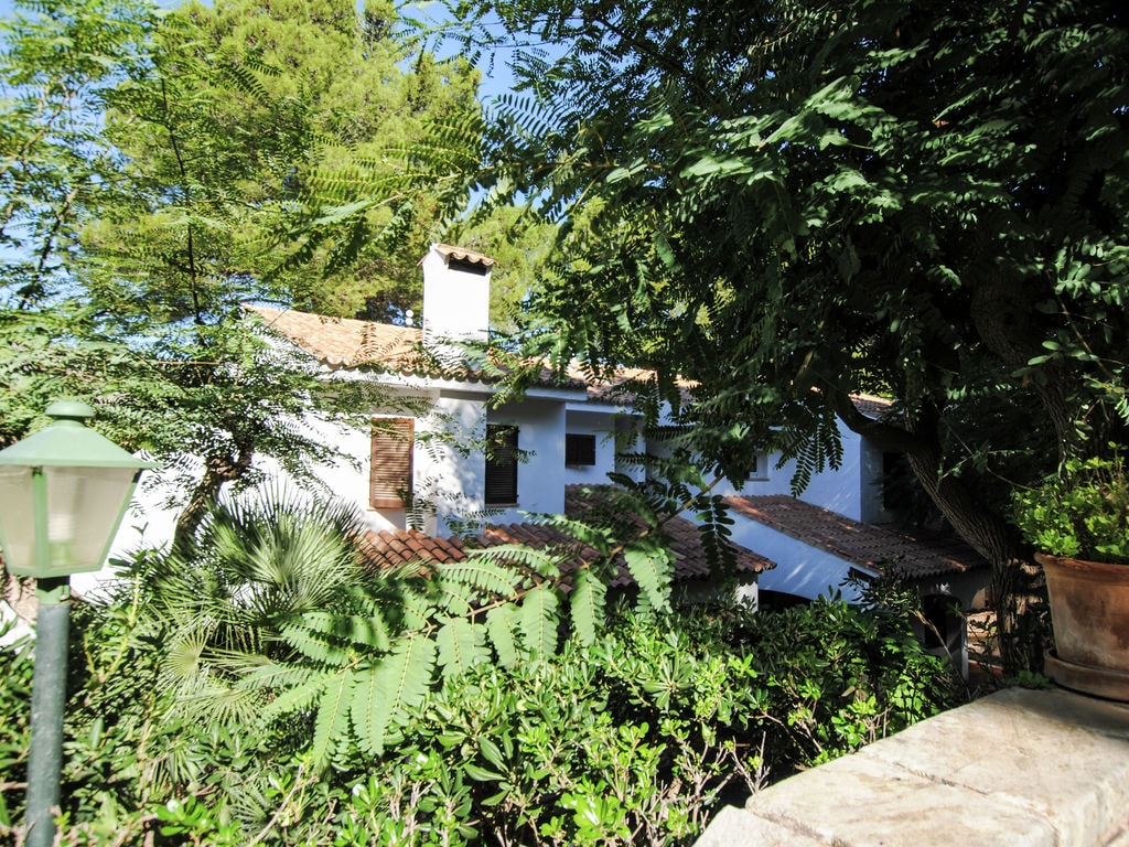 Ferienhaus 10 Ca'n Botana (317702), Cala Sant Vicenç, Mallorca, Balearische Inseln, Spanien, Bild 17