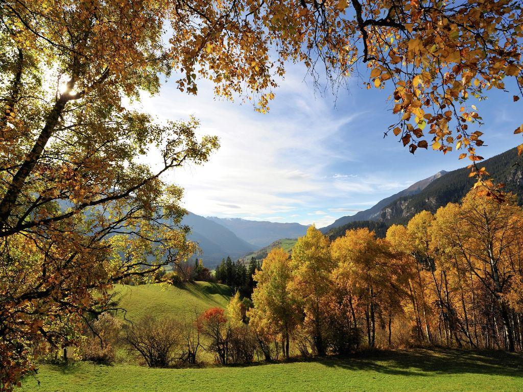 Ferienwohnung Blatter (320599), Habkern, Thunersee - Brienzersee, Berner Oberland, Schweiz, Bild 26