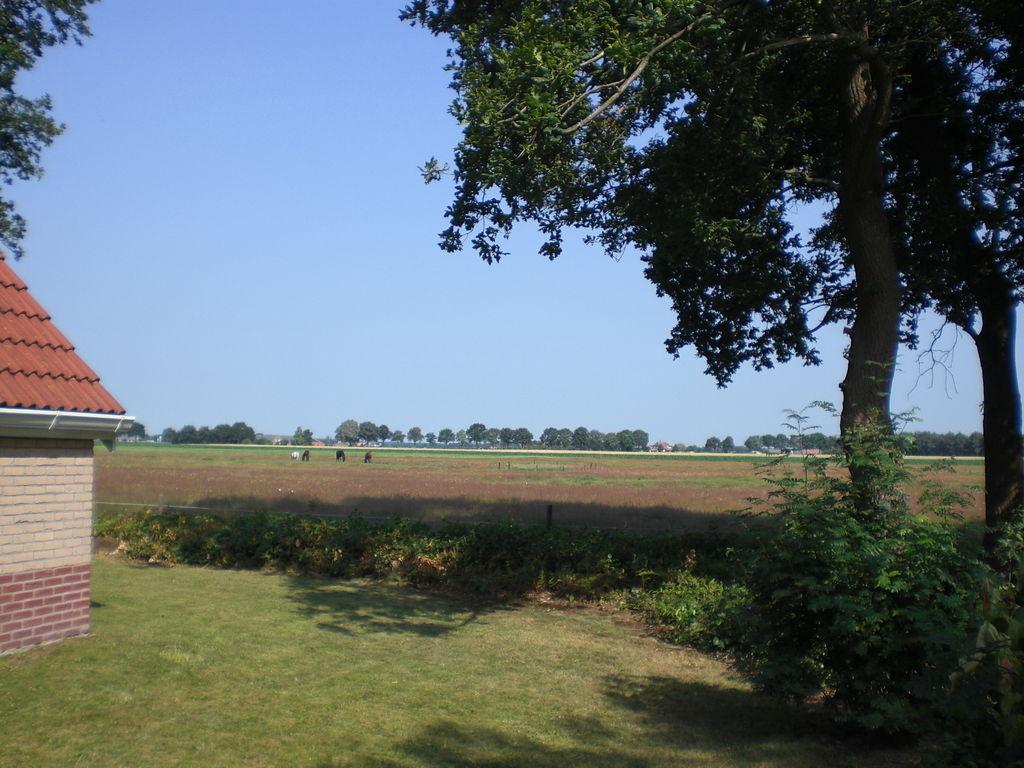 Ferienhaus Buitenplaats Berg en Bos 19 (336415), Lemele, Salland, Overijssel, Niederlande, Bild 5
