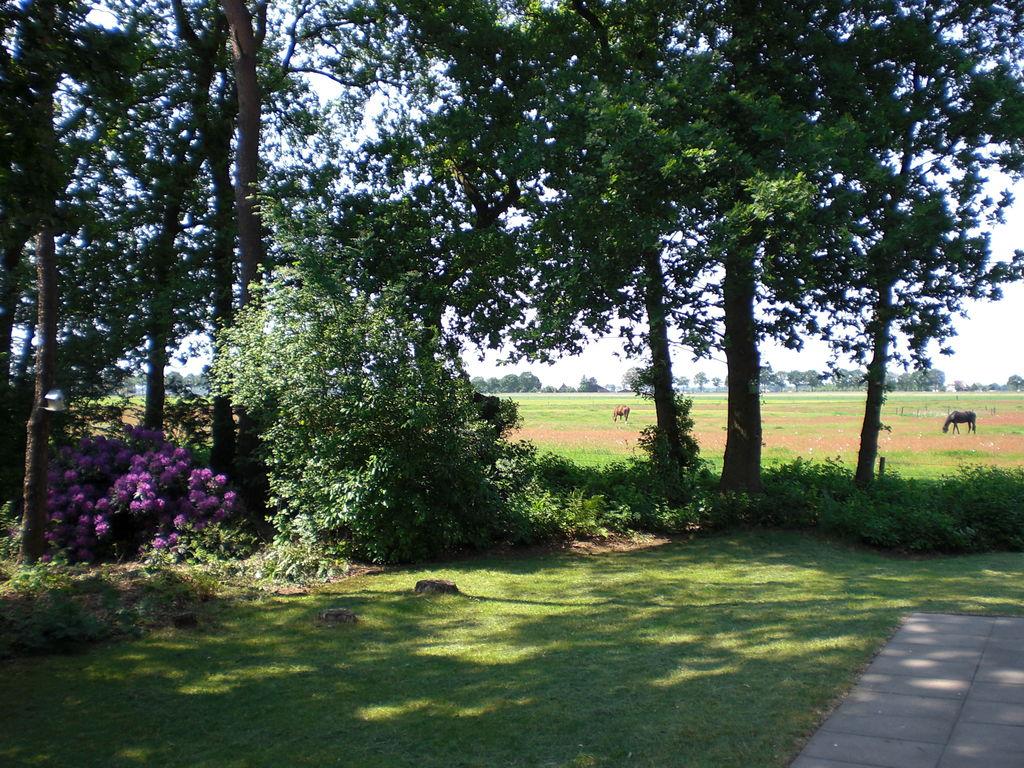 Ferienhaus Buitenplaats Berg en Bos 19 (336415), Lemele, Salland, Overijssel, Niederlande, Bild 24