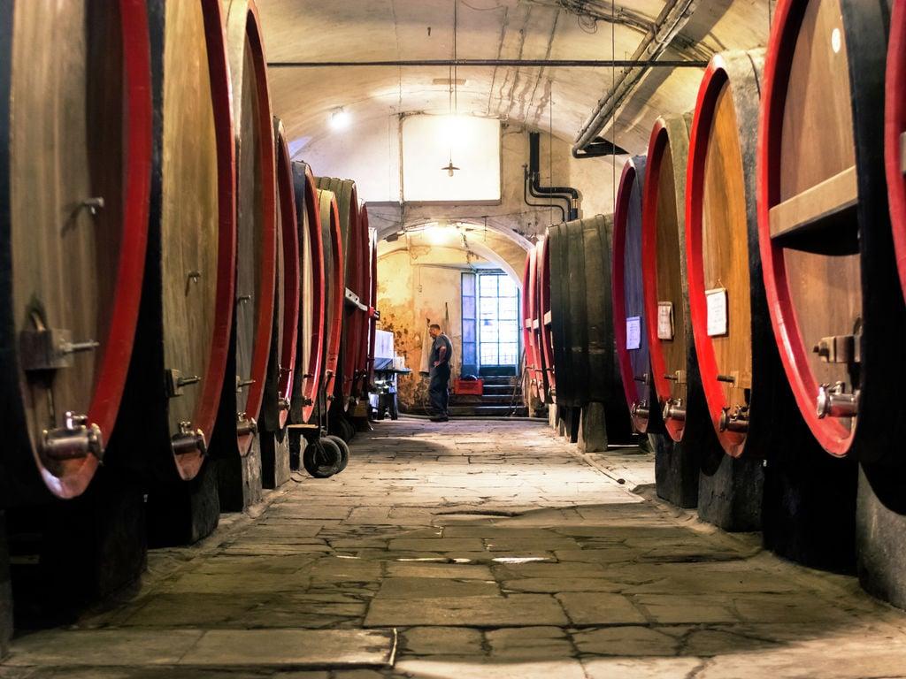 Ferienhaus Gentile (328719), Cassinelle, Alessandria, Piemont, Italien, Bild 28