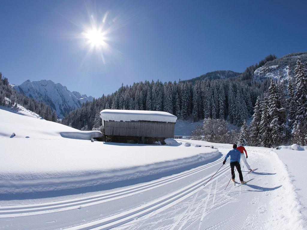 Ferienwohnung Franz (328758), Ramsau im Zillertal, Mayrhofen, Tirol, Österreich, Bild 32