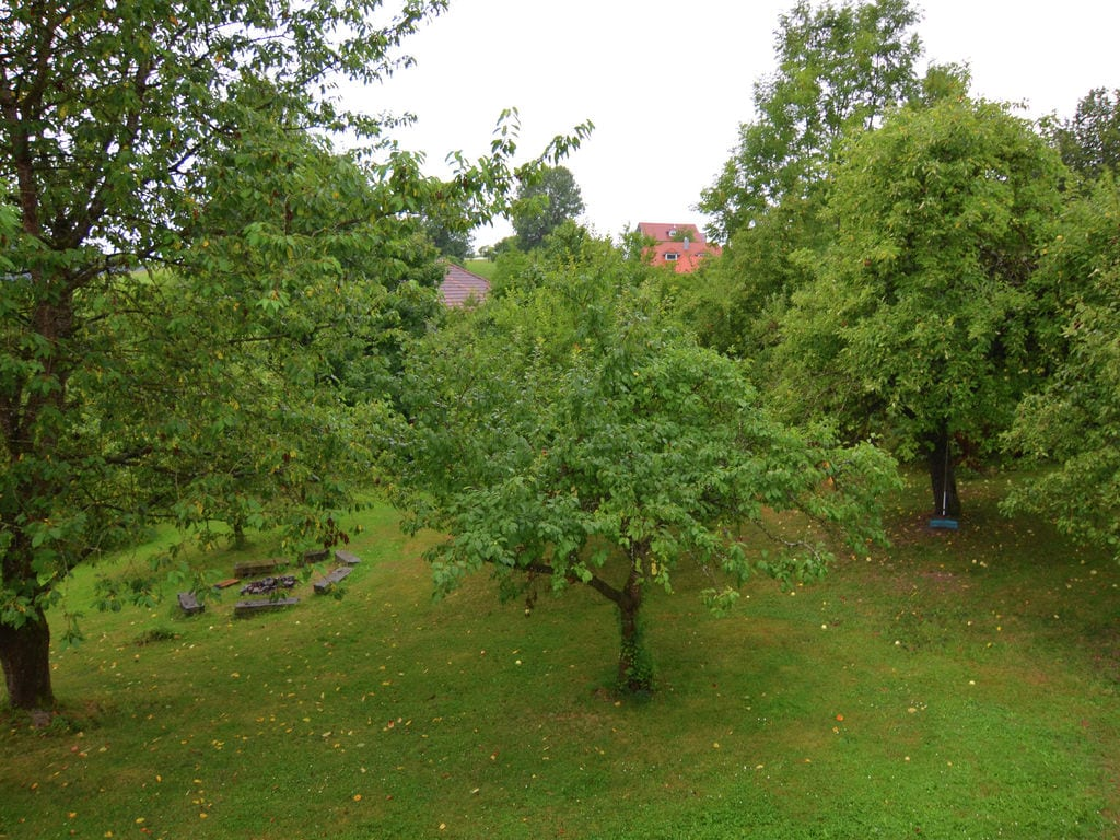 Ferienhaus Gemütliches Ferienhaus in Perlesreut; waldnahe Lage (331987), Perlesreut, Bayerischer Wald, Bayern, Deutschland, Bild 28
