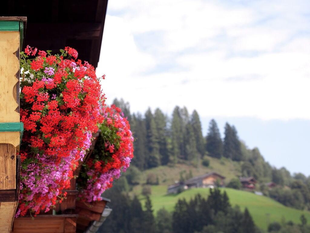 Ferienwohnung Gemütliche Ferienwohnung in Niedernsill in Skigebietsnähe (333717), Niedernsill, Pinzgau, Salzburg, Österreich, Bild 22
