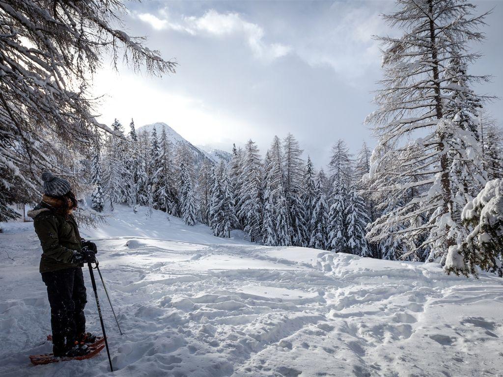 Maison de vacances Vue des Alpes (342496), Arbaz, Crans-Montana - Anzère, Valais, Suisse, image 26