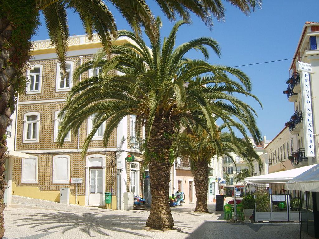 Ferienwohnung Modernes Appartement nahe der Silberküste in Alcobaça (336840), Alcobaça, Costa de Prata, Zentral-Portugal, Portugal, Bild 21