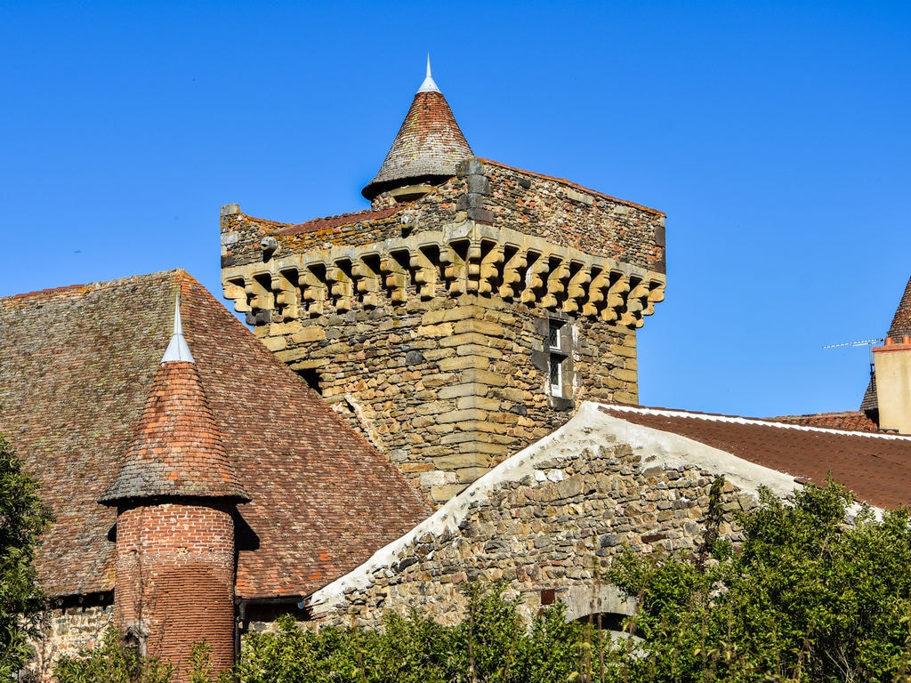Ferienhaus Ruhiges Ferienhaus in Saint-Beauzire mit Garten (344463), Brioude, Haute-Loire, Auvergne, Frankreich, Bild 21