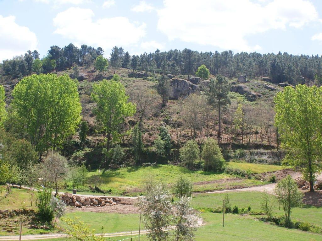 Ferienhaus mit Pool und Garten in Covas (339332), Tábua (Centro-Portugal), , Zentral-Portugal, Portugal, Bild 8