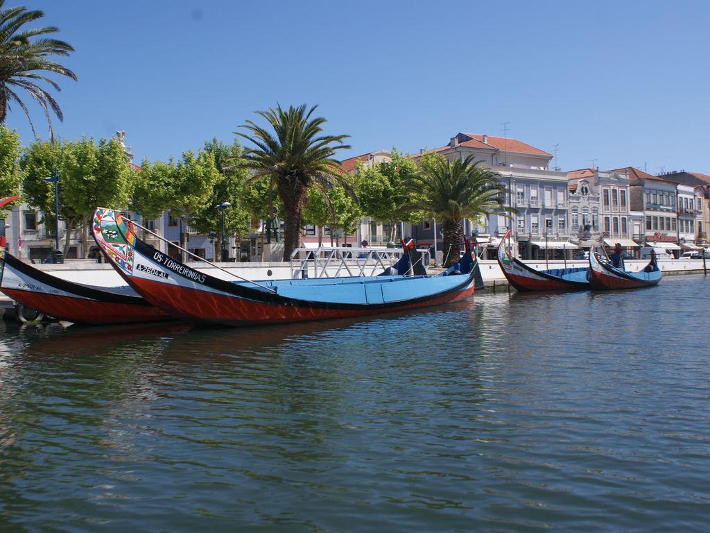 Ferienhaus mit Pool und Garten in Covas (339332), Tábua (Centro-Portugal), , Zentral-Portugal, Portugal, Bild 23