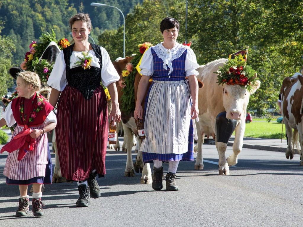 Ferienwohnung Brog (343339), Schattenhalb, Meiringen - Hasliberg, Berner Oberland, Schweiz, Bild 16