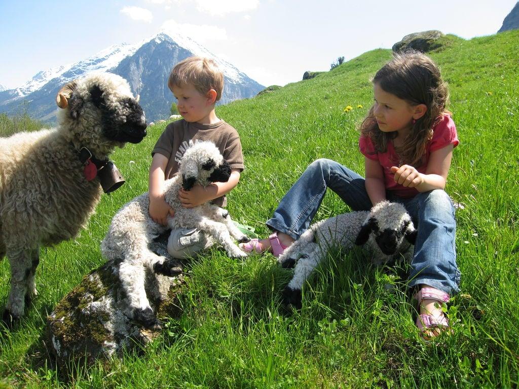 Ferienwohnung Brog (343339), Schattenhalb, Meiringen - Hasliberg, Berner Oberland, Schweiz, Bild 19