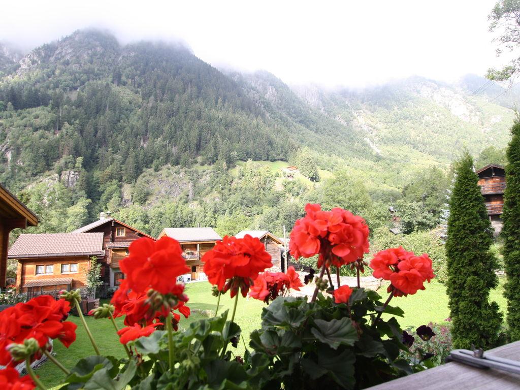 Ferienwohnung Haus Zum Mehlbaum (343343), Naters, Brig - Simplon, Wallis, Schweiz, Bild 25