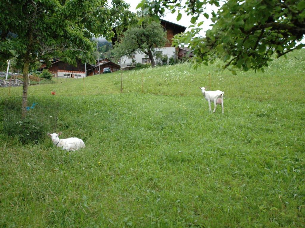 Ferienwohnung Gemütliche Bergblick-Wohnung im Scharnachtal (343054), Scharnachtal, Adelboden - Frutigen - Kandersteg, Berner Oberland, Schweiz, Bild 15