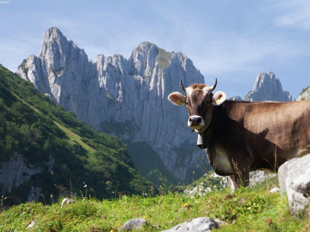 Ferienwohnung Großzügige Ferienwohnung mit Garten in Saas-Almagell (343174), Saas Almagell, Saastal, Wallis, Schweiz, Bild 26