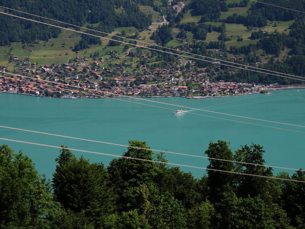 Ferienwohnung Schöne Ferienwohnung in Hasliberg mit Garten (343079), Hasliberg, Meiringen - Hasliberg, Berner Oberland, Schweiz, Bild 23