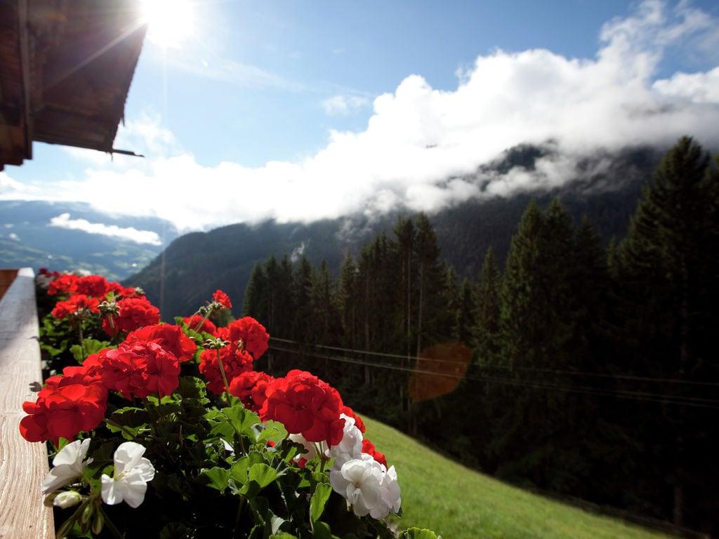 Appartement de vacances Steigerhof (345338), Fügenberg, Zillertal, Tyrol, Autriche, image 34
