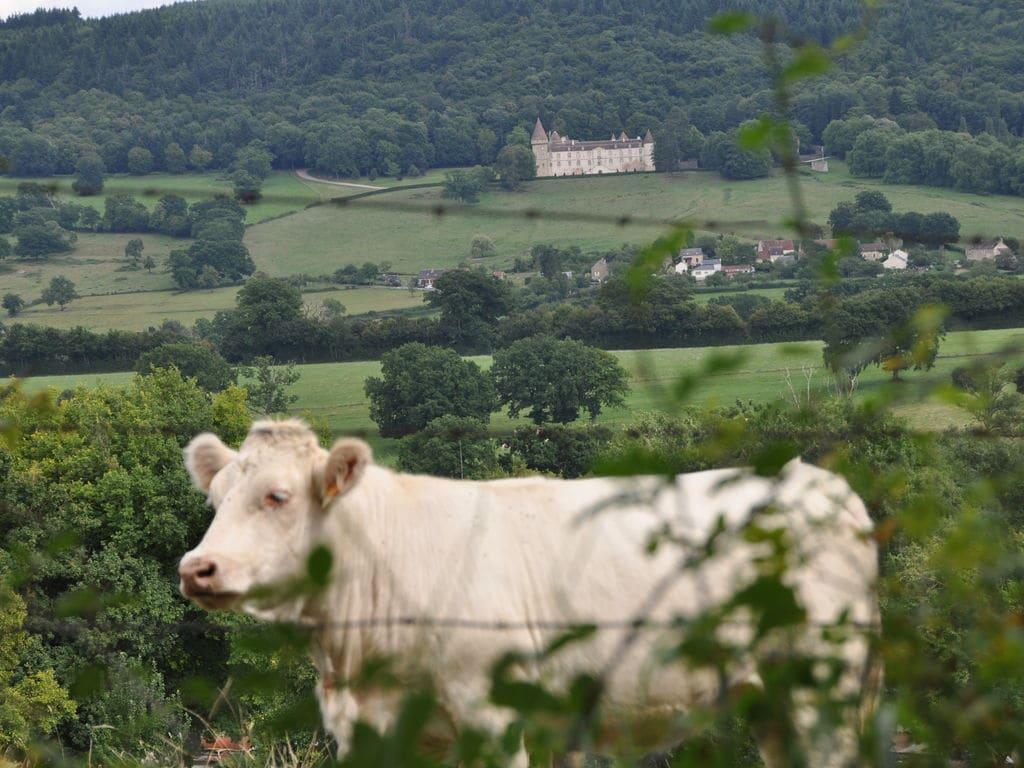Ferienhaus Maison Pouilly (343837), Fontette, Yonne, Burgund, Frankreich, Bild 24