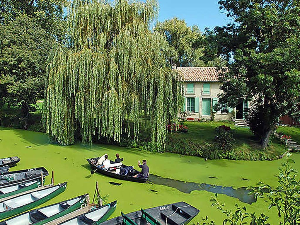 Ferienhaus Gemütliches Ferienhaus in Souvigné mit privatem Pool (359353), La Mothe St Héray, Deux-Sèvres, Poitou-Charentes, Frankreich, Bild 29