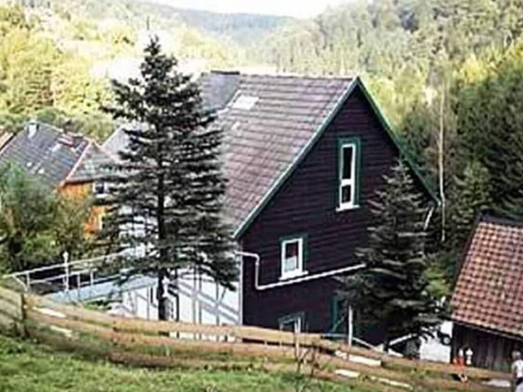 Ferienwohnung Gemütliches Apartment in Rübeland am Waldrand (355600), Blankenburg (DE), Harz (Sachsen-Anhalt), Sachsen-Anhalt, Deutschland, Bild 24