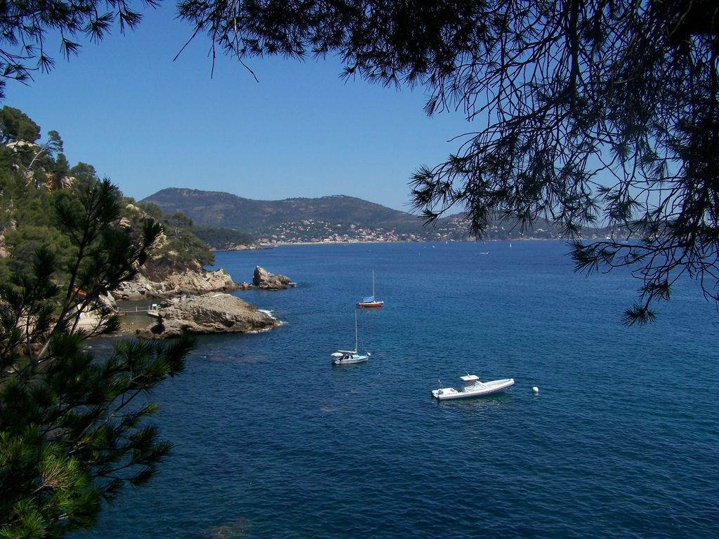 Ferienhaus Gemütliches Haus mit Klimaanlage in der schönen Provence (355513), Solliès Pont, Côte d'Azur, Provence - Alpen - Côte d'Azur, Frankreich, Bild 18
