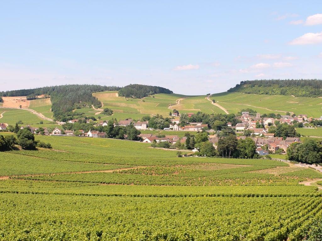 Ferienhaus La Côte des Blancs 8 pers (357099), Crêches sur Saône, Saône-et-Loire, Burgund, Frankreich, Bild 32