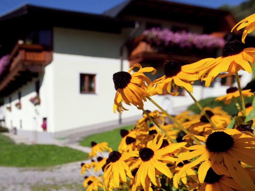 Appartement de vacances Appartment Roswitha (357205), Wagrain, Pongau, Salzbourg, Autriche, image 4