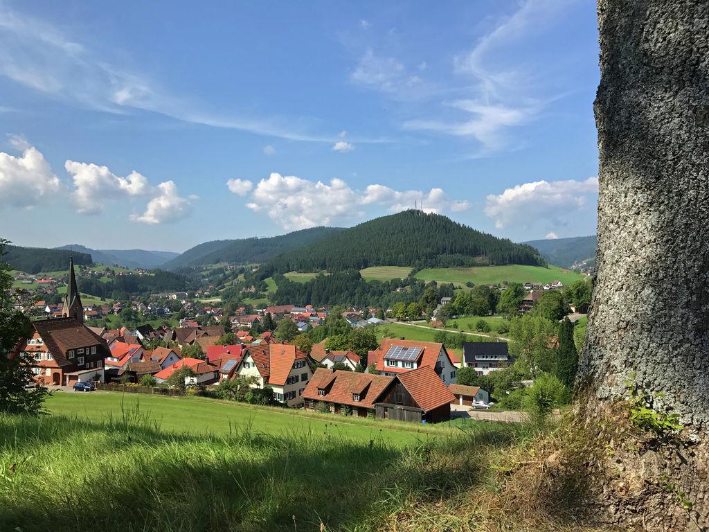 Ferienwohnung Panoramablick (357105), Baiersbronn, Schwarzwald, Baden-Württemberg, Deutschland, Bild 15