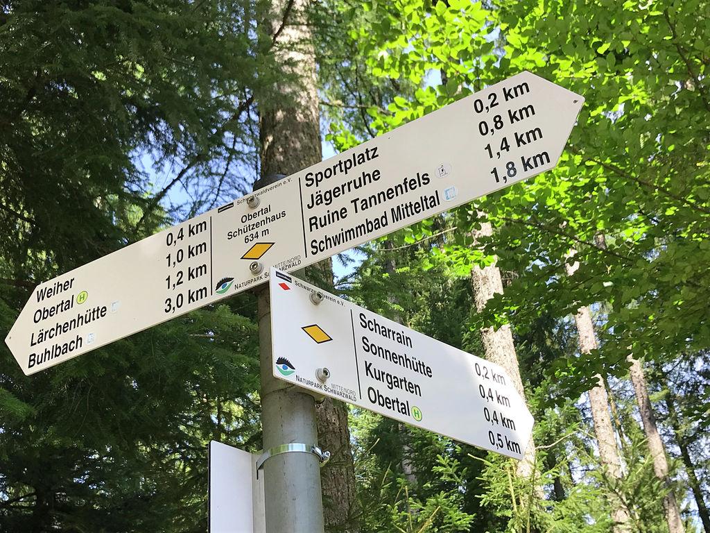 Ferienwohnung Panoramablick (357105), Baiersbronn, Schwarzwald, Baden-Württemberg, Deutschland, Bild 20