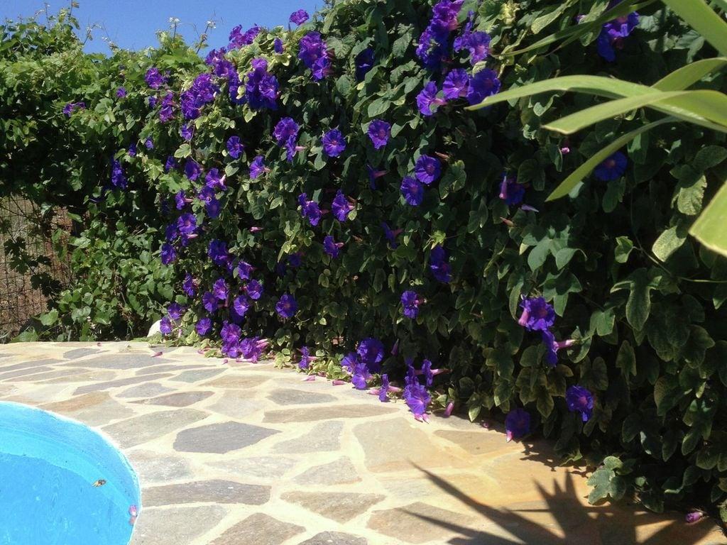 Ferienhaus Villa Eleonora (362298), Prines, Kreta Nordküste, Kreta, Griechenland, Bild 33