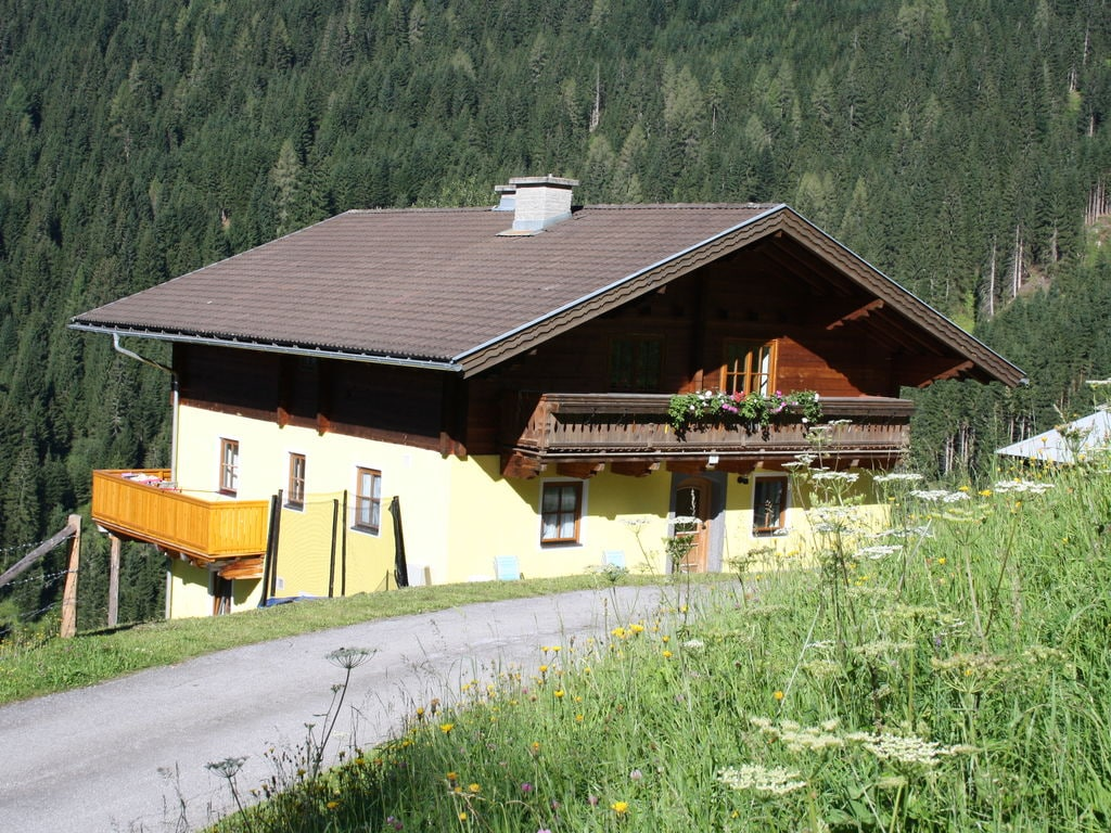 Holiday apartment Gemütliches Appartement in Wagrain am Wald (363977), Wagrain, Pongau, Salzburg, Austria, picture 2