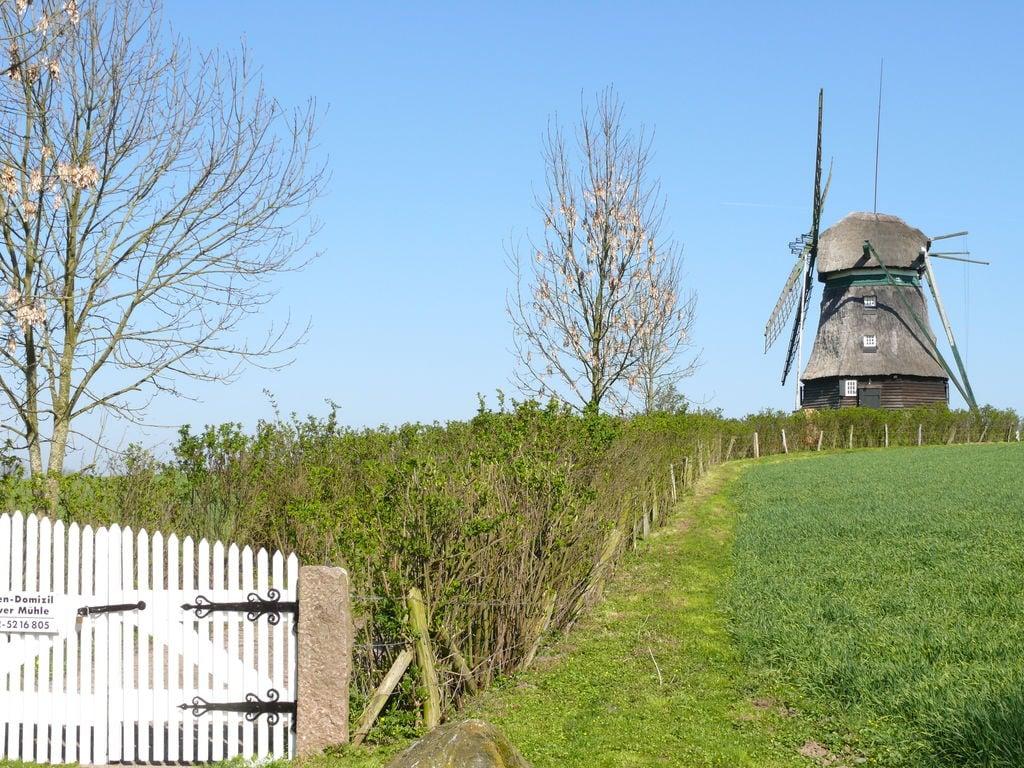 Ferienhaus Windmühle Ferienhaus in Farve Garten und Panoramablick (364072), Oldenburg in Holstein, Ostseespitze Wagrien, Schleswig-Holstein, Deutschland, Bild 7