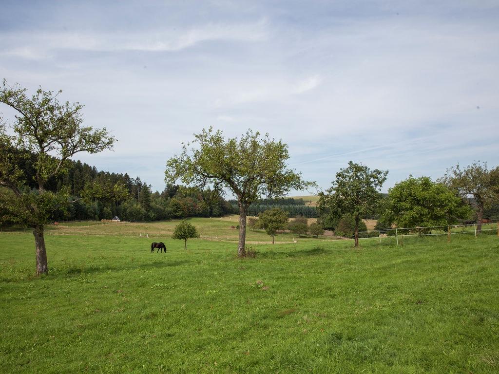Ferienwohnung Attraktive Ferienwohnung in Bettenfeld mit Garten und Grill (383271), Bettenfeld, Moseleifel, Rheinland-Pfalz, Deutschland, Bild 25