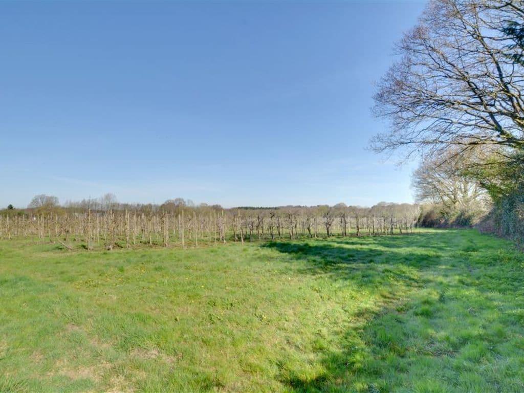 Ferienhaus Orchard Cottage (392676), Cranbrook, Kent, England, Grossbritannien, Bild 3