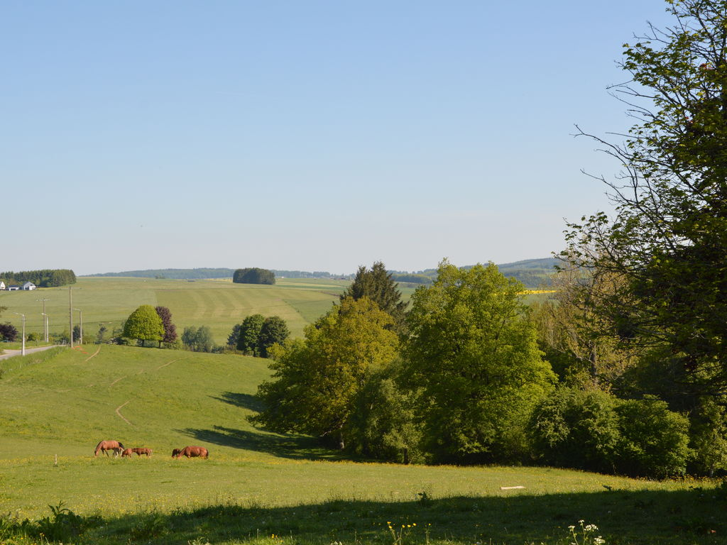 Ferienhaus Au Fief des Oiseaux (409695), Werpin, Luxemburg (BE), Wallonien, Belgien, Bild 35
