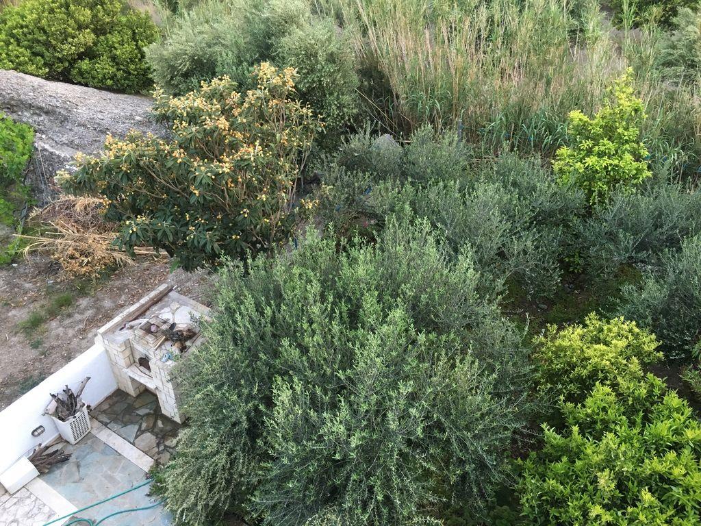 Holiday apartment Wunderschöne Villa in Agia Fotia Kreta in Strandnähe (396277), Ierapetra, Crete South Coast, Crete, Greece, picture 20