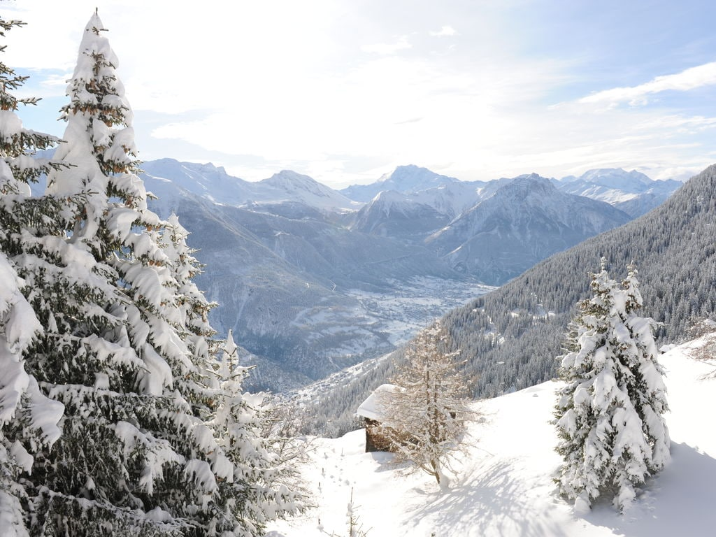 Holiday apartment Ramona (392657), Mörel, Aletsch - Goms, Valais, Switzerland, picture 21