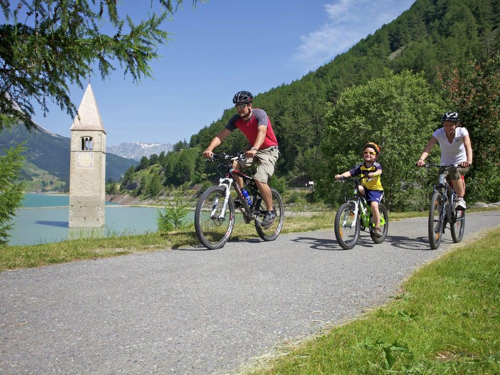 Appartement de vacances Haus Senn (397860), Tösens, Serfaus-Fiss-Ladis, Tyrol, Autriche, image 22