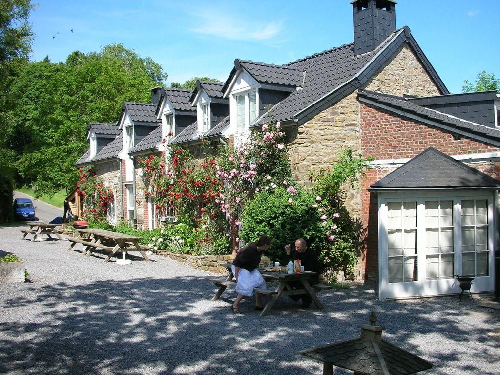 Ferienhaus Le Grand Gîte de Laval (410621), Ferrières, Lüttich, Wallonien, Belgien, Bild 33