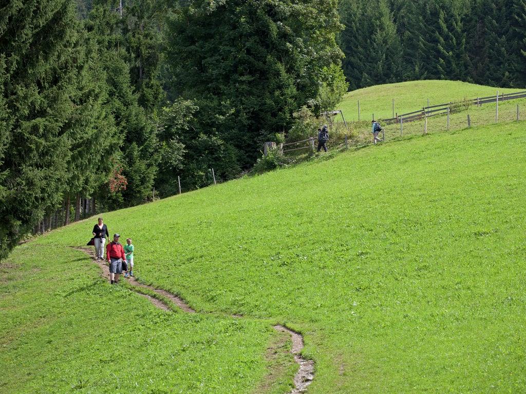 Appartement de vacances Appartement Riedmann (403282), Brixen im Thale, Kitzbüheler Alpen - Brixental, Tyrol, Autriche, image 37