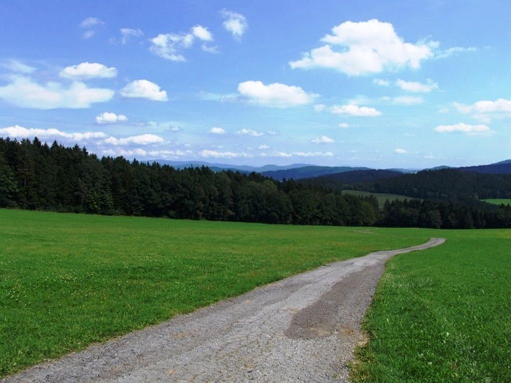 Ferienhaus  (406509), Viechtach, Bayerischer Wald, Bayern, Deutschland, Bild 32