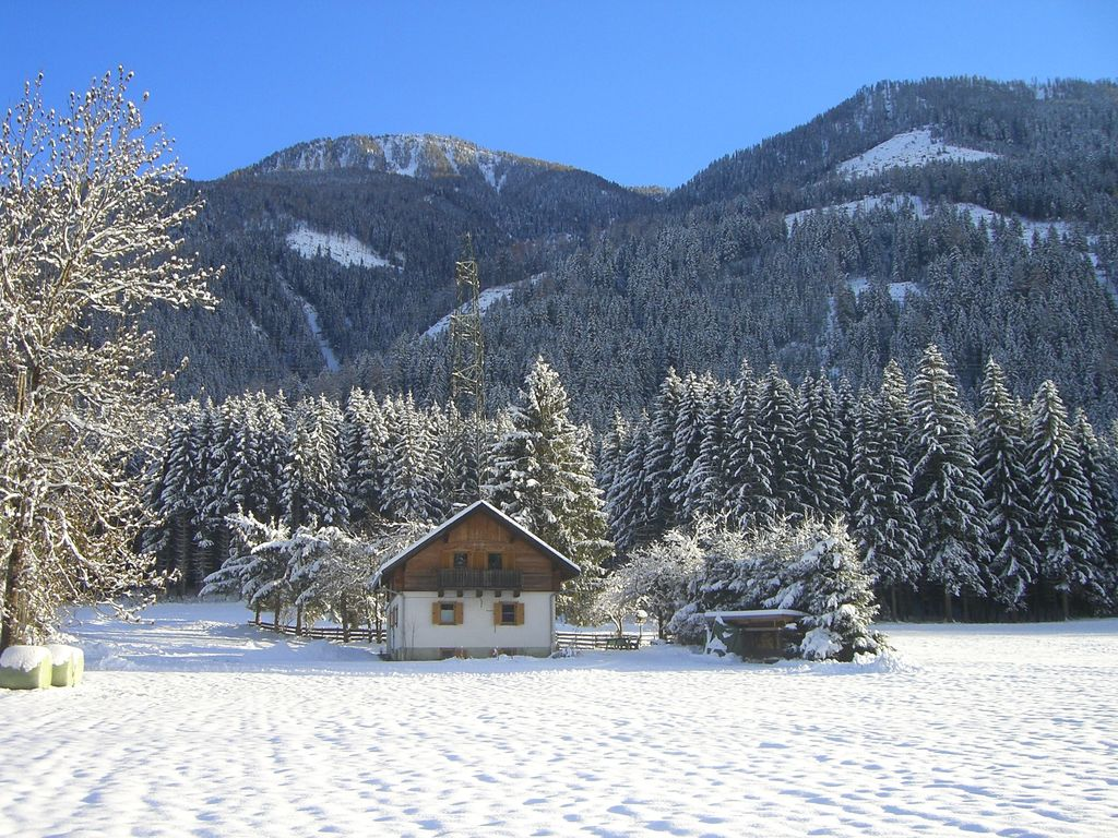 Maison de vacances Waldschmied (419639), Stall, , Carinthie, Autriche, image 10