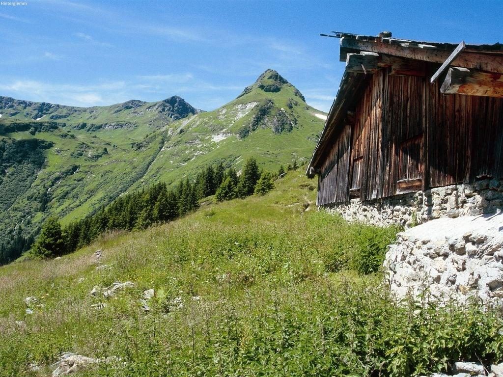 Appartement de vacances Sonniges Apartment in der Nähe des Skigebiets in Leogang (423510), Leogang, Pinzgau, Salzbourg, Autriche, image 20