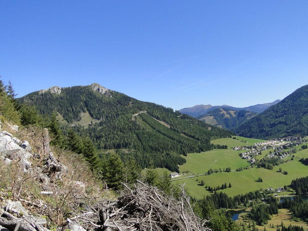 Ferienhaus Gemütliches Chalet in Hohentauern in Skigebietnähe (426290), Hohentauern (Ort), Murtal, Steiermark, Österreich, Bild 24