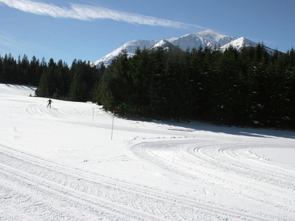Ferienhaus Gemütliches Chalet in Hohentauern in Skigebietnähe (426290), Hohentauern (Ort), Murtal, Steiermark, Österreich, Bild 35