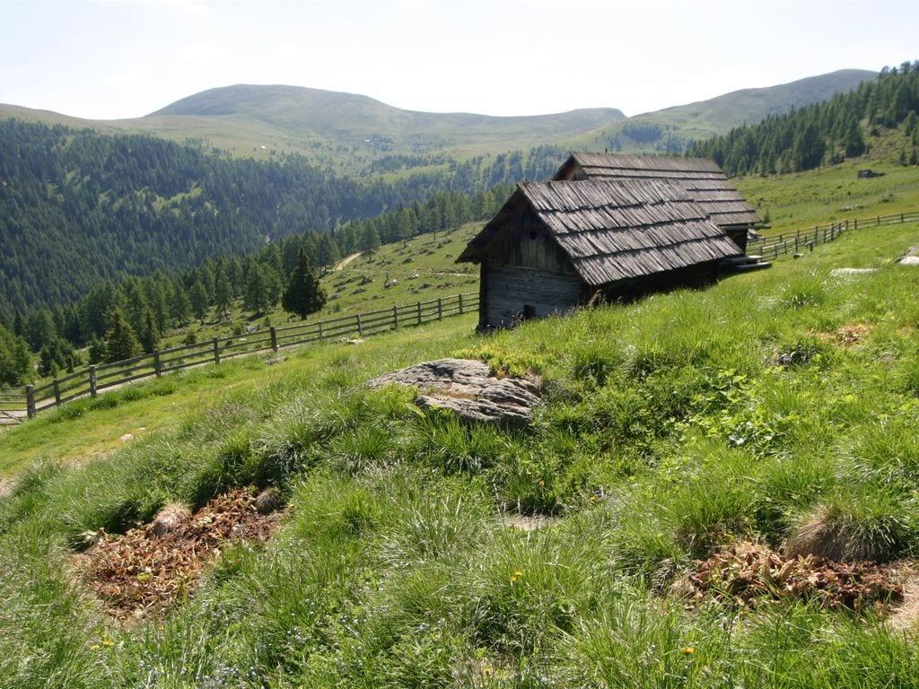 Maison de vacances Gamperhütte (426667), Eisentratten, Lieser- et Maltatal, Carinthie, Autriche, image 19