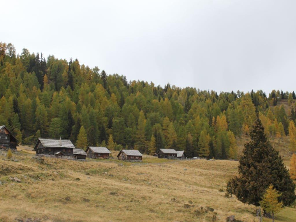 Maison de vacances Gamperhütte (426667), Eisentratten, Lieser- et Maltatal, Carinthie, Autriche, image 22