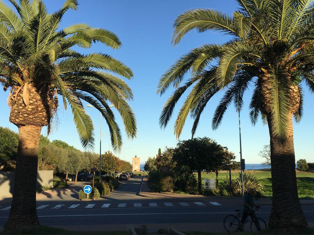 Ferienhaus Geräumige Ferienwohnung in Moriani-Plage mit Swimmingpool (463930), San Nicolao, Nordkorsika, Korsika, Frankreich, Bild 15