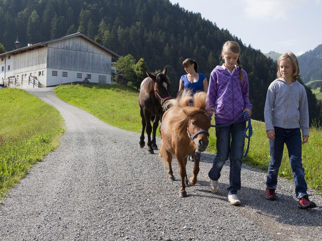 Appartement de vacances Koglbauer (438391), Söll, Wilder Kaiser, Tyrol, Autriche, image 33